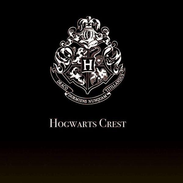 Harry Potter Projector Lumos Maxima