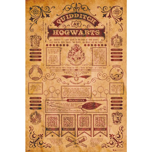 Poster Harry Potter Quidditch at Hogwarts 91,5 x 61 cms