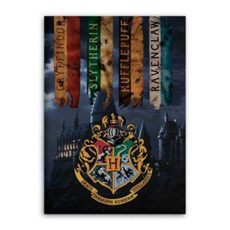 Manta Polar Hogwarts Harry Potter 70 x 140 cms