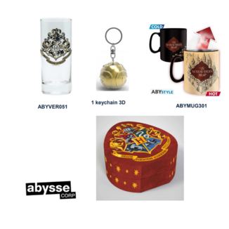 Llavero 3D, Taza y Vaso Harry Potter Pack regalo