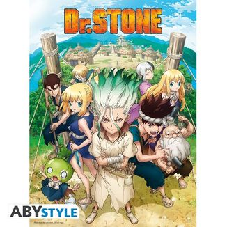 Dr. Stone Group Poster 52 x 38 cms